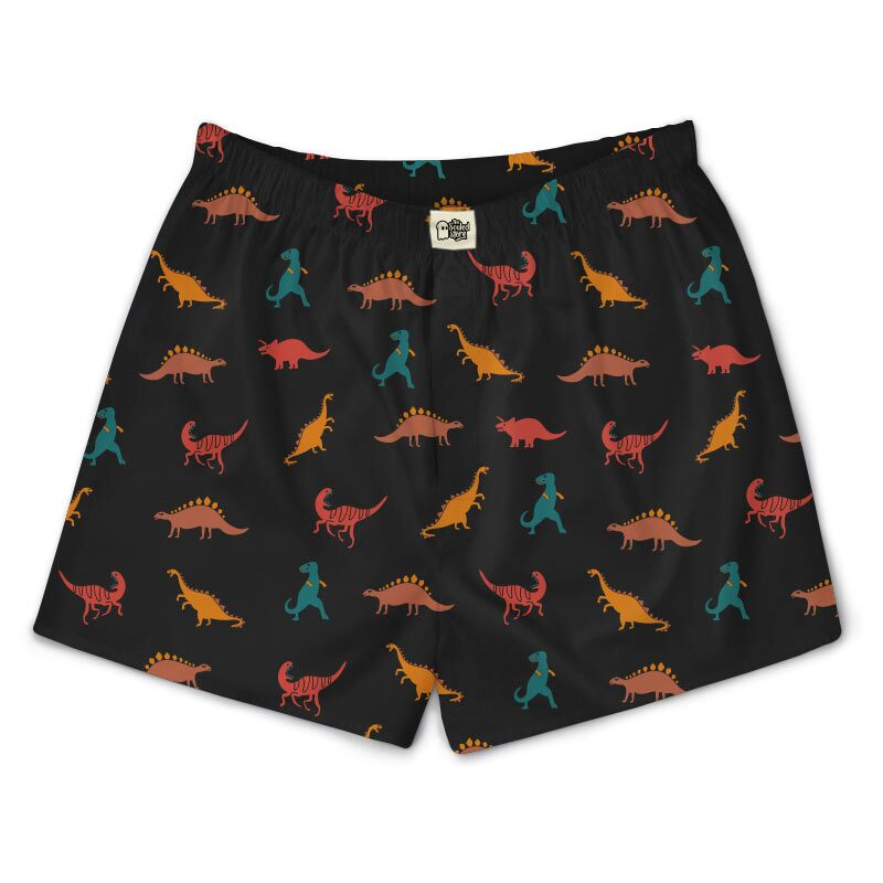 Dinosaur Pattern Boxers | The Souled Store